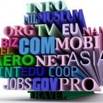 Domain Reg – How Important is it?